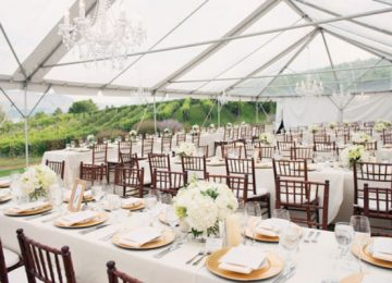 Best Tips to Select The Best Party Rentals